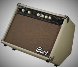 Комбоусилители для электроакустических гитар!!!