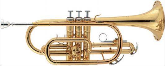 TCC28L (TCC23L) / Корнеты, Музыкальный Мастер
