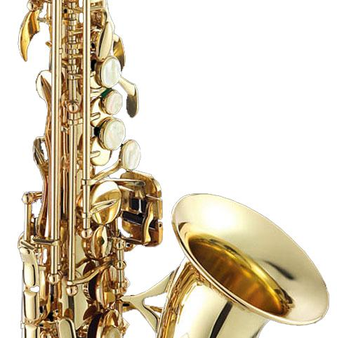 SS3159LQ-CH / Саксофоны, Музыкальный Мастер
