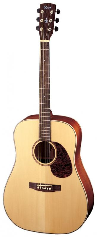 Earth100 / Акустические гитары, Музыкальный Мастер