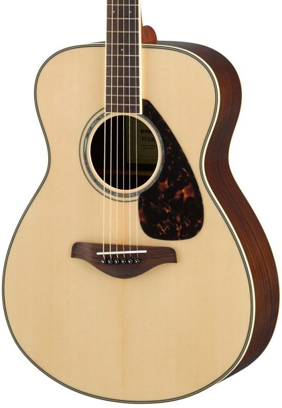 FS830 NT / Акустические гитары, Музыкальный Мастер