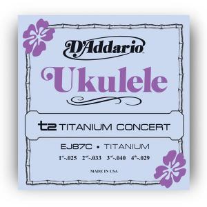 EJ87C TITANIUM UKULELE CONCERT / Струны Для других инструментов, Музыкальный Мастер