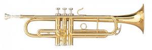 TTC28L (TTC3) / Трубы, Музыкальный Мастер