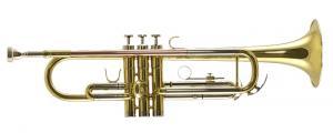 TJTR-2500 Renaissance / Трубы, Музыкальный Мастер