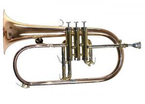 TJFL-6500 Renaissance / Флюгельгорн, Музыкальный Мастер