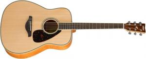 FG840 NT / Акустические гитары, Музыкальный Мастер