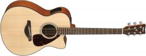 FSX800C NT / Акустические гитары, Музыкальный Мастер