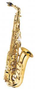 AL-500 Alto Saxophone / Саксофоны, Музыкальный Мастер