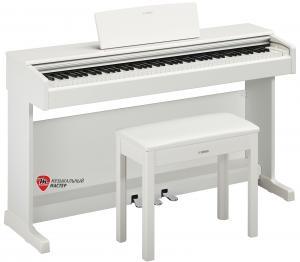 ARIUS YDP144WH (+блок питания) / Цифровые фортепиано, Музыкальный Мастер