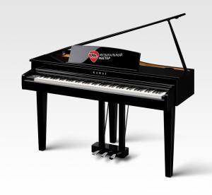 DG30 Цифровой рояль / Цифровые фортепиано, Музыкальный Мастер